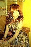 Sonya Harvard Travesti Valencia